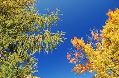 Blue skies and foliage over Durham, NH.